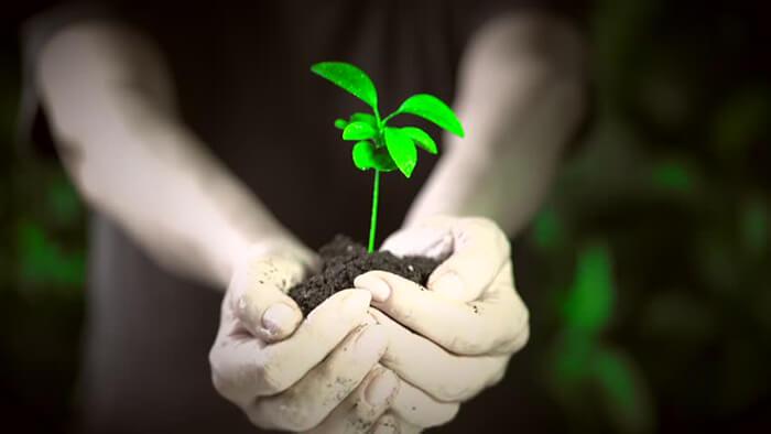 política nacional de educação ambiental